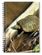Red-eared Slider Spiral Notebook
