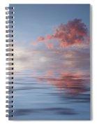 Red Emotion Spiral Notebook