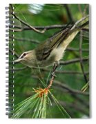 Red Eyed Vireo Spiral Notebook