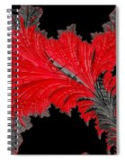 Red Feather - Abstract Spiral Notebook