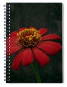 Red Flower 5 Spiral Notebook