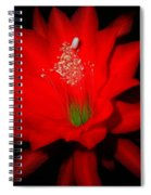 Red Flower For You Spiral Notebook