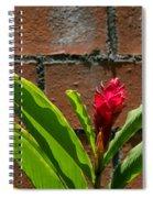 Red Flower Iv Spiral Notebook