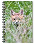 Red Fox Baby Hiding Spiral Notebook