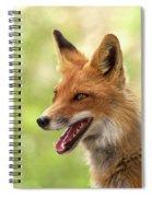 Red Fox Spiral Notebook