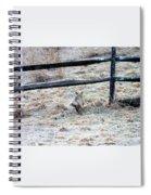 Kayla And Betty Spiral Notebook