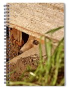 Red Fox Kit Peaking Out From Den Under Old Granary Spiral Notebook