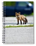 Red Fox Kit Standing On Old Road Spiral Notebook