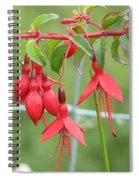 Red Fresia Spiral Notebook
