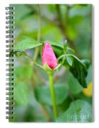 Red Garden Rose Bud Spiral Notebook