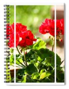 Red Geraniums Triptych Spiral Notebook