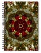 Red Gold Kaleidoscope 2 Spiral Notebook