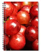 Red Grape Pano Spiral Notebook
