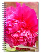 Red Haired Lady Spiral Notebook