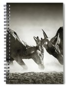 Red Hartebeest Dual In Dust Spiral Notebook