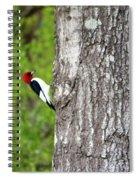 Red Head Bird Spiral Notebook