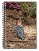 Red Head Spiral Notebook