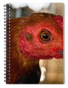 Red Headed Chicken Spiral Notebook