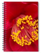 Red Camellia Spiral Notebook