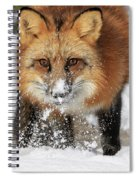 Red Hunter Spiral Notebook