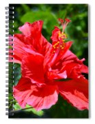 Red II Spiral Notebook