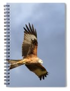 Red Kite Flying Spiral Notebook