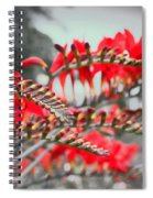 Red Lady Fingers Spiral Notebook