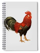 Red Leghorn Rooster Spiral Notebook
