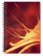 Red Lilly  Spiral Notebook
