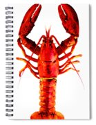 Red Lobster - Full Body Seafood Art Spiral Notebook