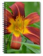Red Magic Spiral Notebook