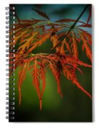 Maple Lace 2 Spiral Notebook