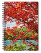 Red Maple On Lake Shore Spiral Notebook