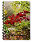 Red Maples Spiral Notebook