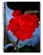 Red  Menace  Spiral Notebook