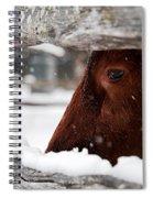 Red Milking Devon Snowflakes Spiral Notebook