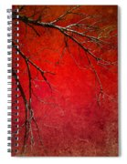 Red Morning Spiral Notebook