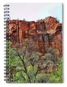 Red Mountains Zion National Park Usa Spiral Notebook