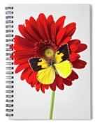 Red Mum With Dogface Butterfly Spiral Notebook