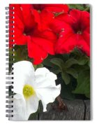 Red N White Spiral Notebook