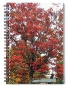 Red Oak 2 Spiral Notebook