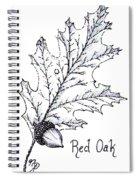 Red Oak Leaf And Acorn Spiral Notebook