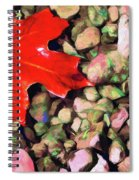 Red On The Rocks Spiral Notebook