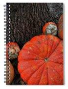 Red Orange Spiral Notebook