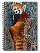 Red Panda Spiral Notebook