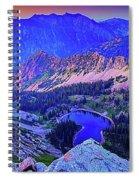 Red Pine Panorama Spiral Notebook