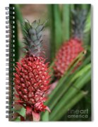 Red Pineapples Spiral Notebook