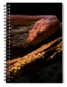 Red Poisonous Snake Spiral Notebook