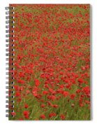 Red Poppies 2 Spiral Notebook