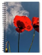Red Poppies On Blue Sky Spiral Notebook